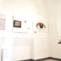 Esposizione-Triennale-di-Arti-Visive-a-Roma-2014-foto-g04